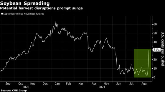 Caribbean Storm Threatens U.S. Soybean Harvests, Lifting Prices