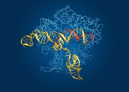 The Cas9 complex depicts the Cas9 protein (in light blue), along with its guide RNA (yellow), and target DNA (red).