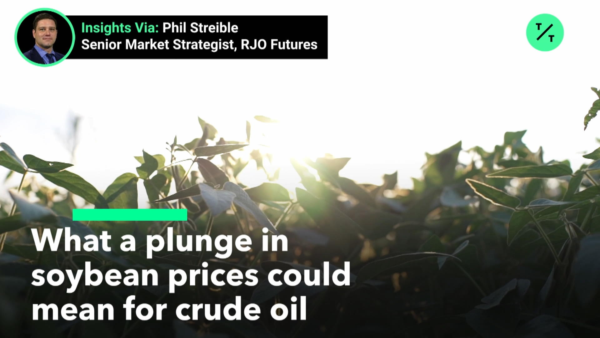 Soybean Oil Price Plunge