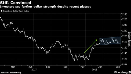 King Dollar, Robo Traders Are the Talk of the Currency Universe