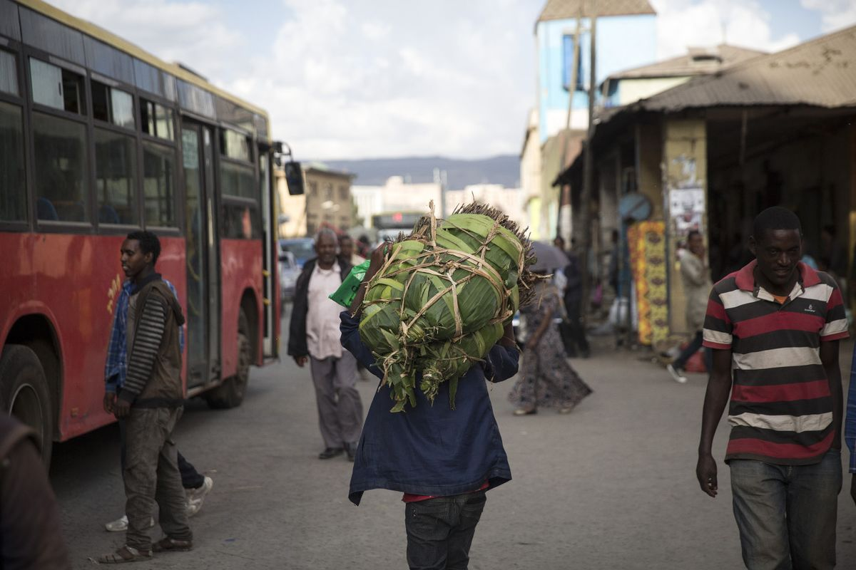 Ethiopia Red Tape Is Barrier for Business as Country Opens Up