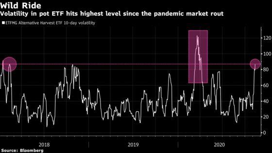 Market Volatility Returns to Pot Industry