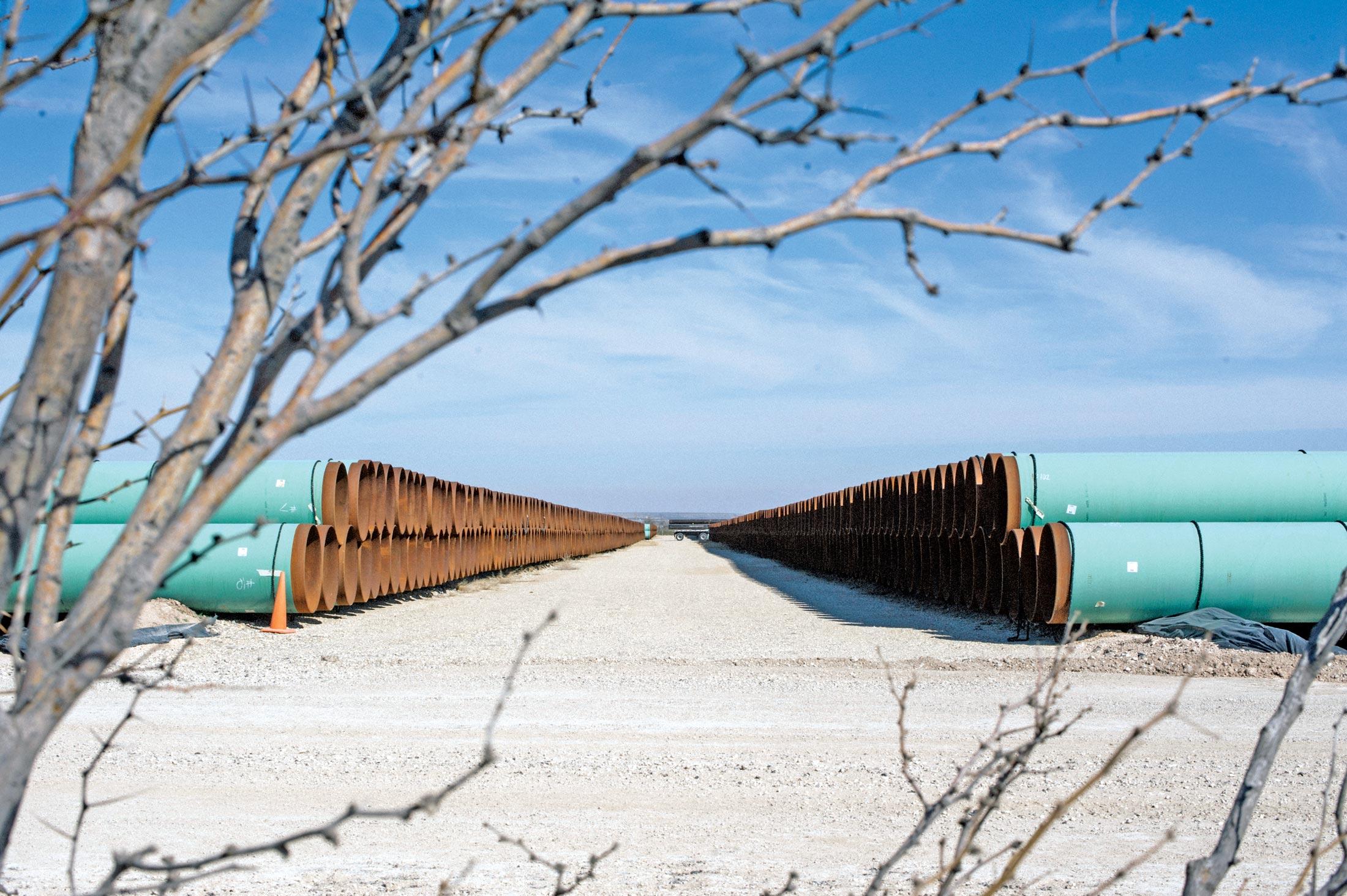 Trump\'s New Border Conflict of Interest - Bloomberg