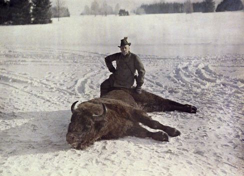 Prince Albert with a bison, 1913