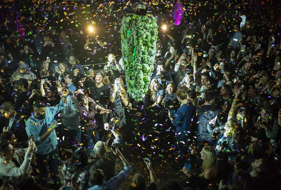 It's Green Day in Canada! Here's Your Legal Weed Shopping Guide
