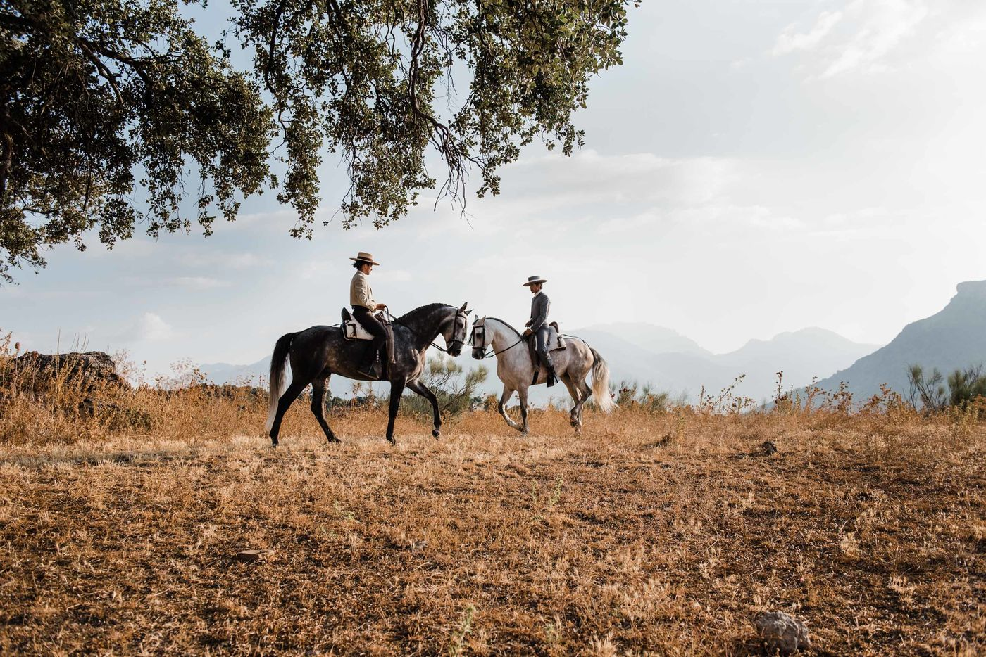 Exploring Andalucía on horseback