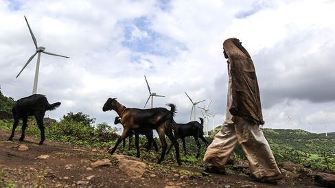 A goat herder with his livestock in India.