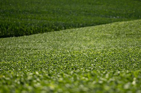 Soybean Futures Jump Most Since 2011 as Hot Weather Curbs Crops