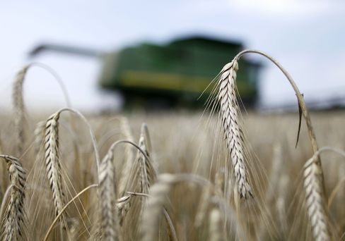 Drought Added to Fedorov Tasks as Russia Joins WTO