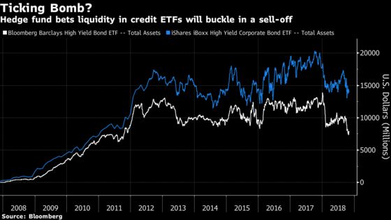 Hedge Fund Manager Stakes Own Cash on a Bet AgainstCredit ETFs