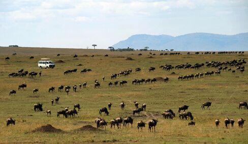 Tourists on Safari in Kenya