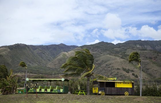 Hawaii Travel Paradise Is Deserted, With Recovery Further Off