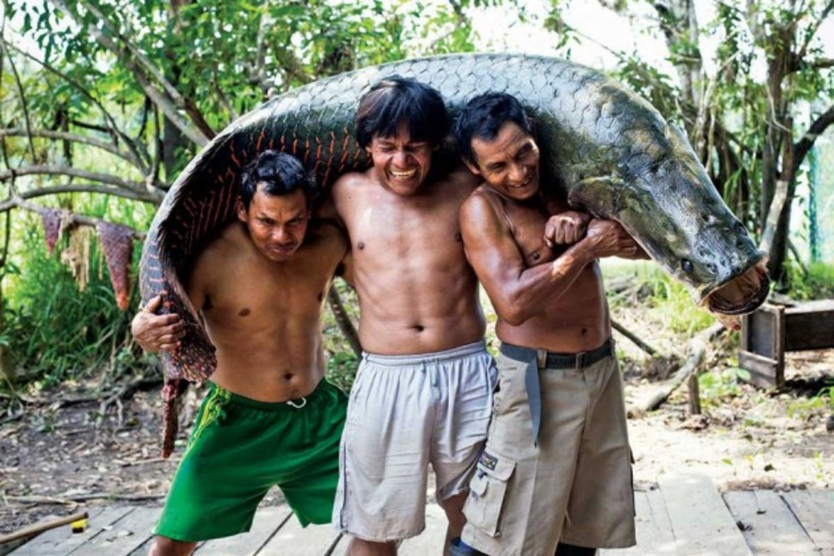 Why Whole Foods Wants You to Eat This Giant Amazonian Fish