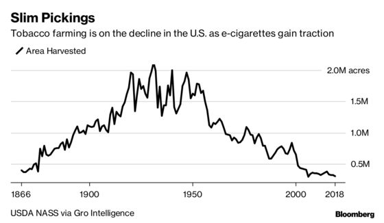 Vaping Puts a Choke Hold on the Last of America's Tobacco Farms