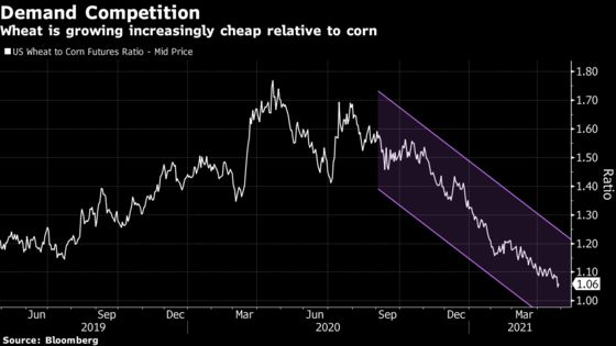 Signs Emerge That Pricey Corn Is Starting to Deter Buyers