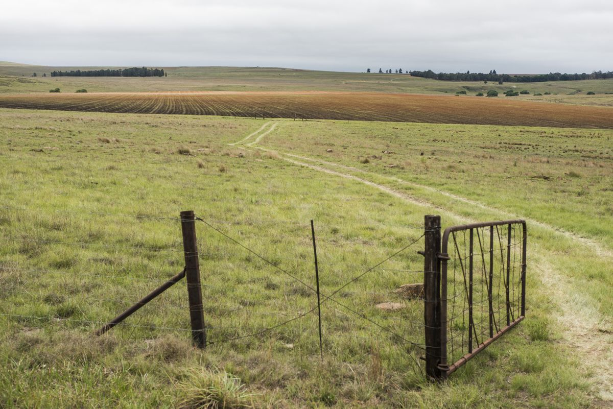 South Africa to Pursue Land Reform Plans Despite Pompeo Criticism