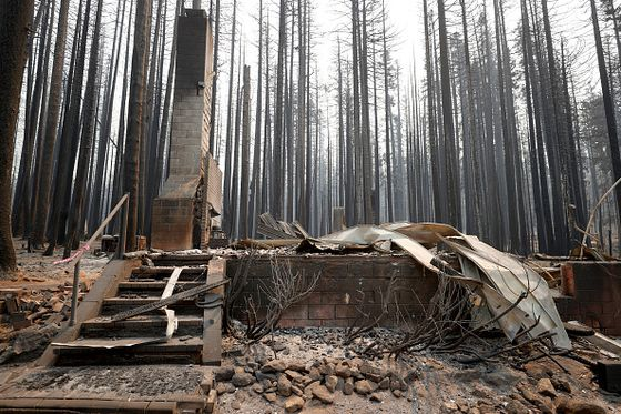 California's Wildfire Dilemma: Put Houses or Forests First?