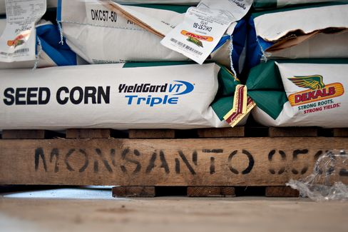 Monsanto Wins Seed Case as High Court Backs Patent Rights