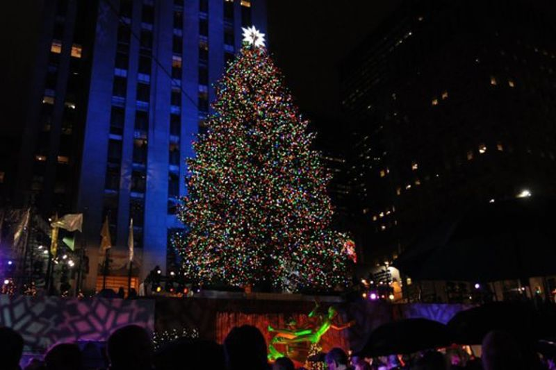 what would the christmas tree at rockefeller center be worth