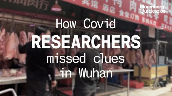 Delayed Wuhan Report Adds Crucial Detail to Covid Origin Puzzle