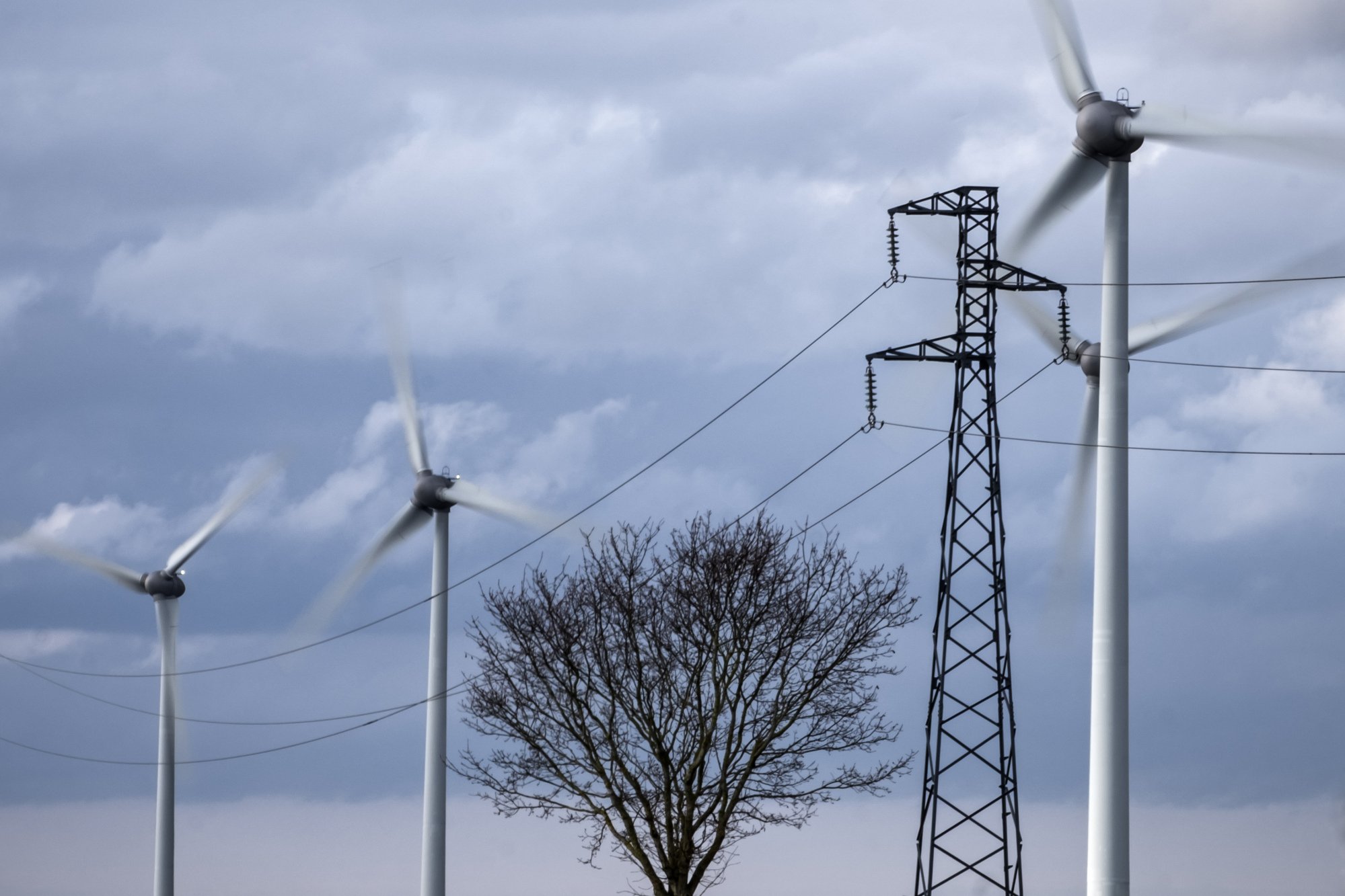 Wind And Solar Will Rule The Worlds Power Grid By 2050 Bloomberg Biomass