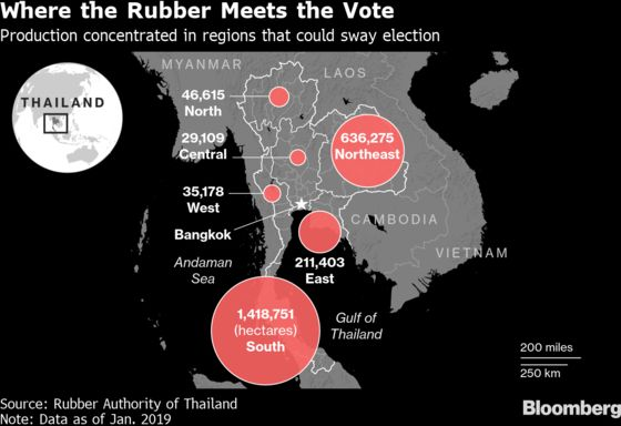The Battle to Win Thailand's Election Starts in Bruised Farms