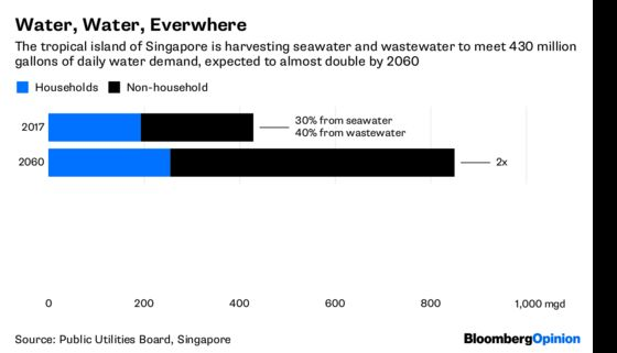 With MahathirNext Door, Singapore's Water BabyNeeds a Lifeboat
