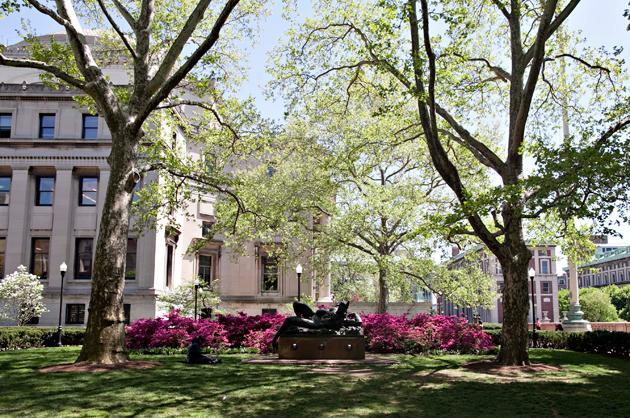 Best College ROI: New York