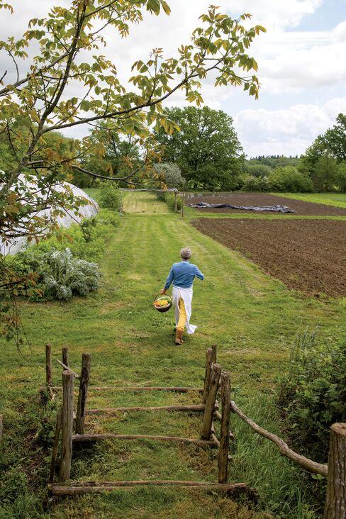 Alain Passardtakes a stroll.
