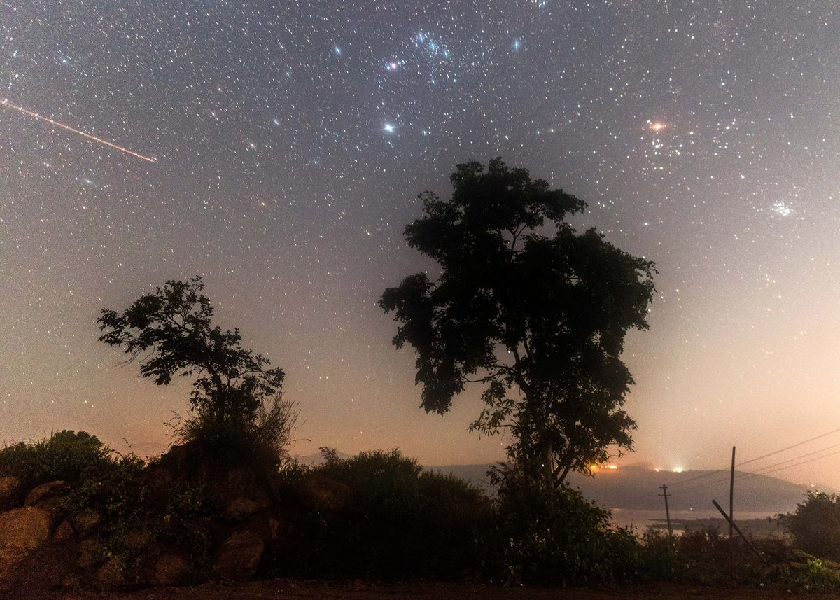Turn Skyward to Catch One of World's Best Meteor Showers