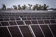 Solar Farm As Australians Favor Clean Energy Over Gas for Economic Revival