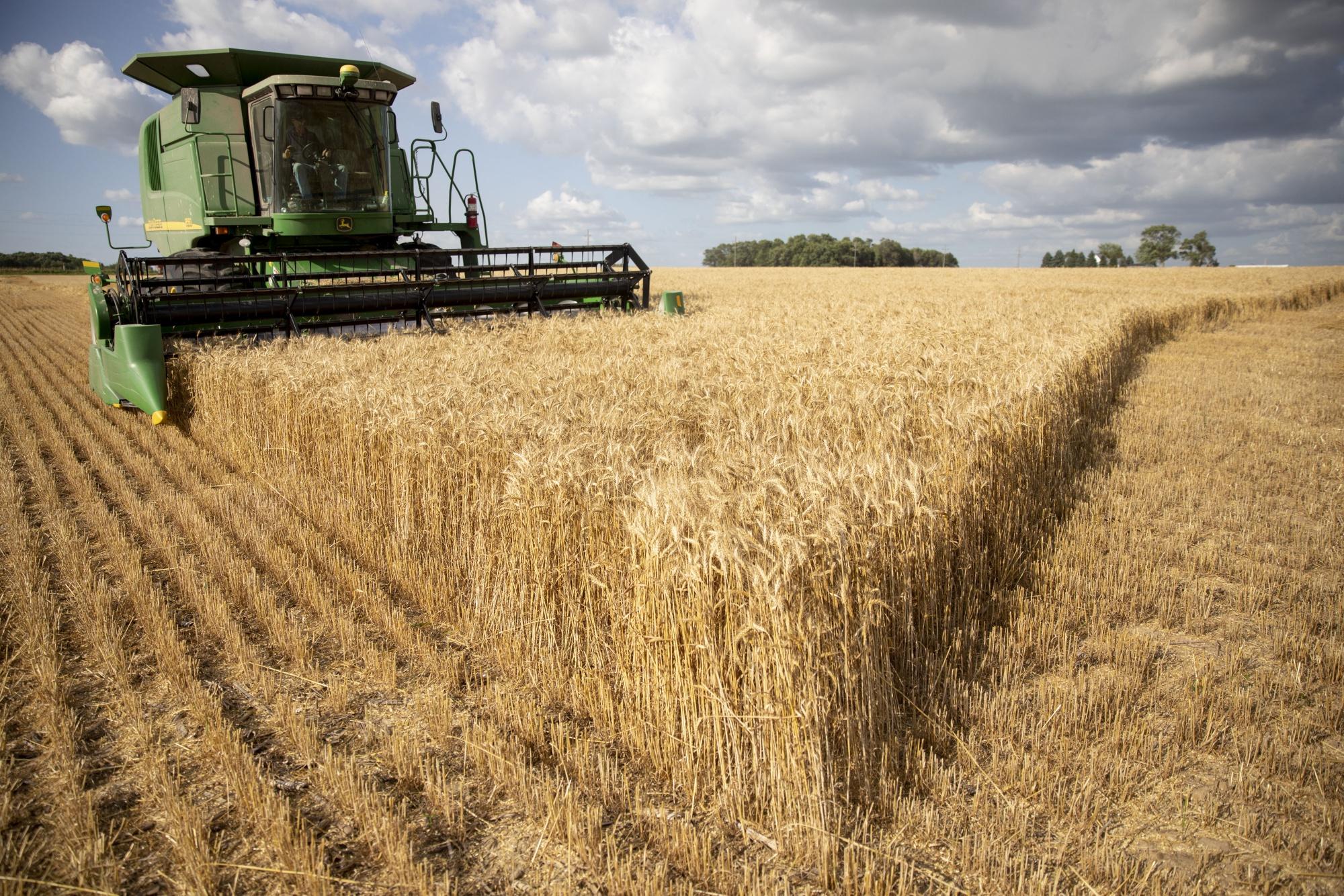 Chinese Buyers Seek Tariff Exemptions for U S  Farm Goods