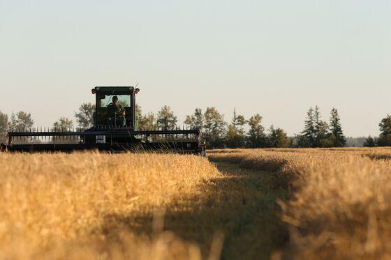 Saudi Arabia Plans Sale of Grain Silos as Privatizations Pick Up