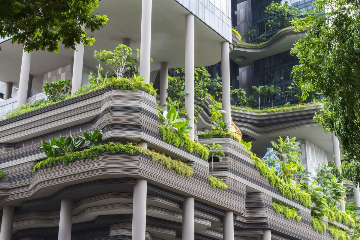 bloomberg.com - Faris Mokhtar - Cooling Down Singapore Takes a Combination of Trees and Tech
