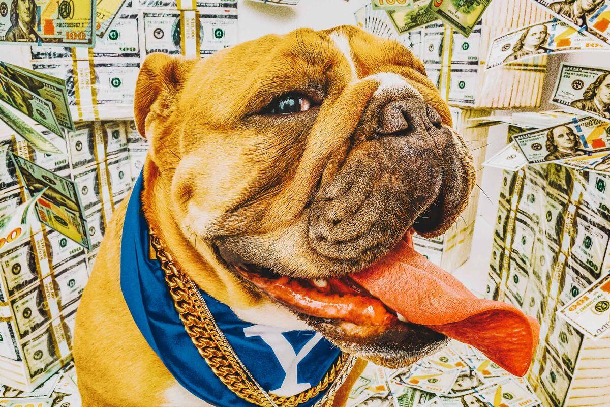 How David Swensen Made Yale Fabulously Rich