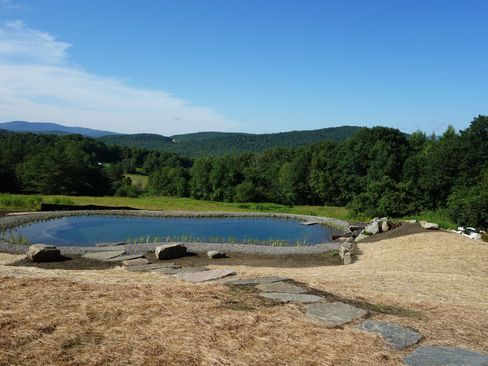Gartenart was one of the first firms to bring the European swimming pond stateside.