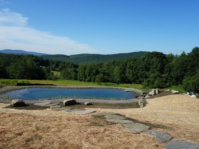 gartenart was one of the first firms to bring the european swimming pond stateside