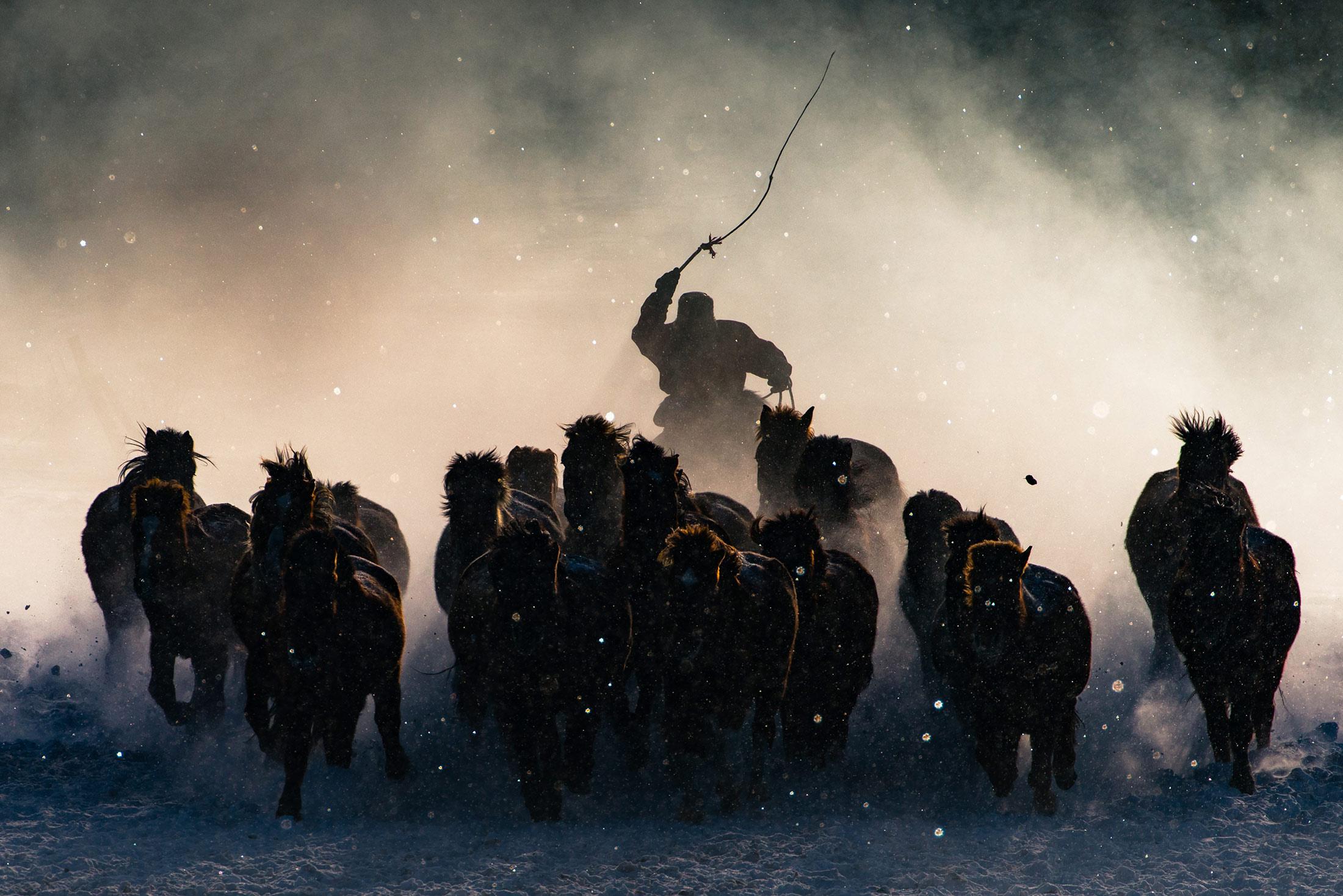 Grand Prize: Winter Horseman