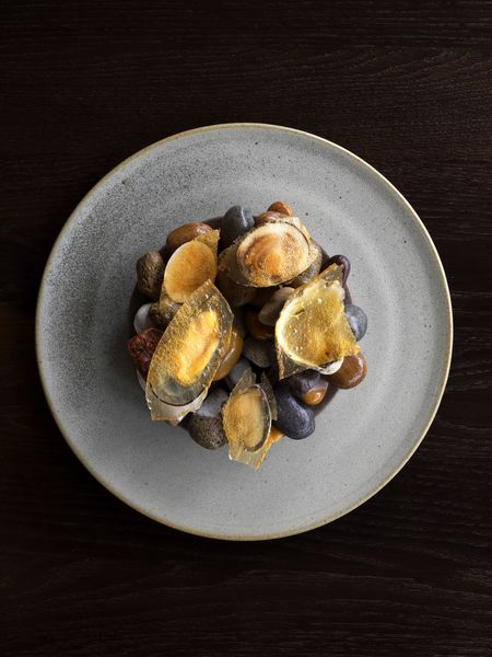 A platter of clams, oyster, and mussel, draped with a seasoned skin of chicken stock and crocodile fat.