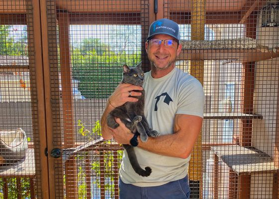 How to Unite Cat and Bird Lovers? Build a Catio