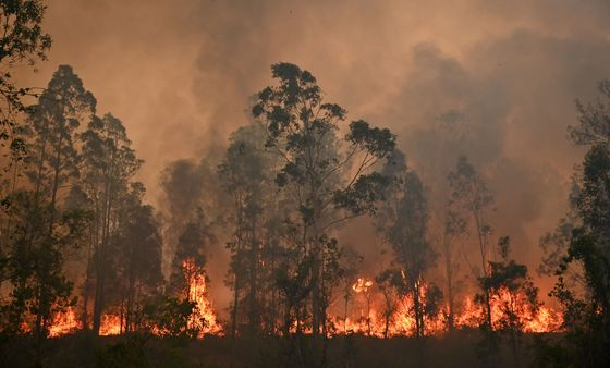 Australia Braces for Another Week of Dangerous Bushfires: Photo