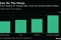 relates to Zero-Fee ETFs Are Elephant in Room at Annual Industry Summit