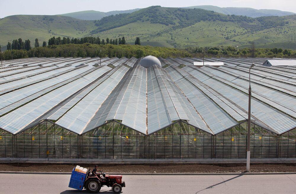 Black earth farming россия новороссийский комбинат хлебопродуктов