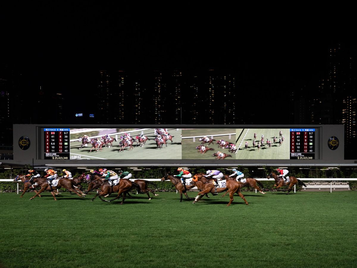 The Gambler Who Cracked the Horse-Racing Code - Bloomberg