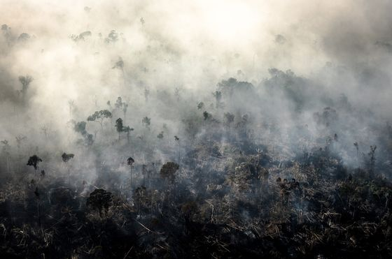 Amazon Fires Cause Brazil's CO2 Emissions to Jump Amid Pandemic