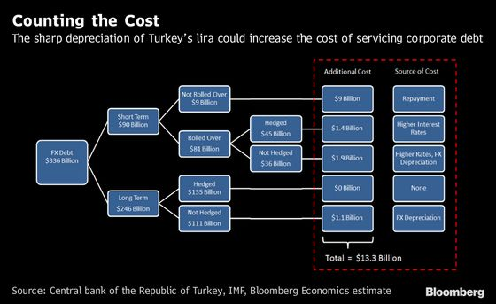 FX Loans Will Cost Turkish Companies, And the Economy