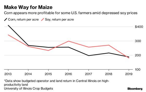 Corn Calls Out to U.S. Farmersas Trade War Erodes Soy Profits
