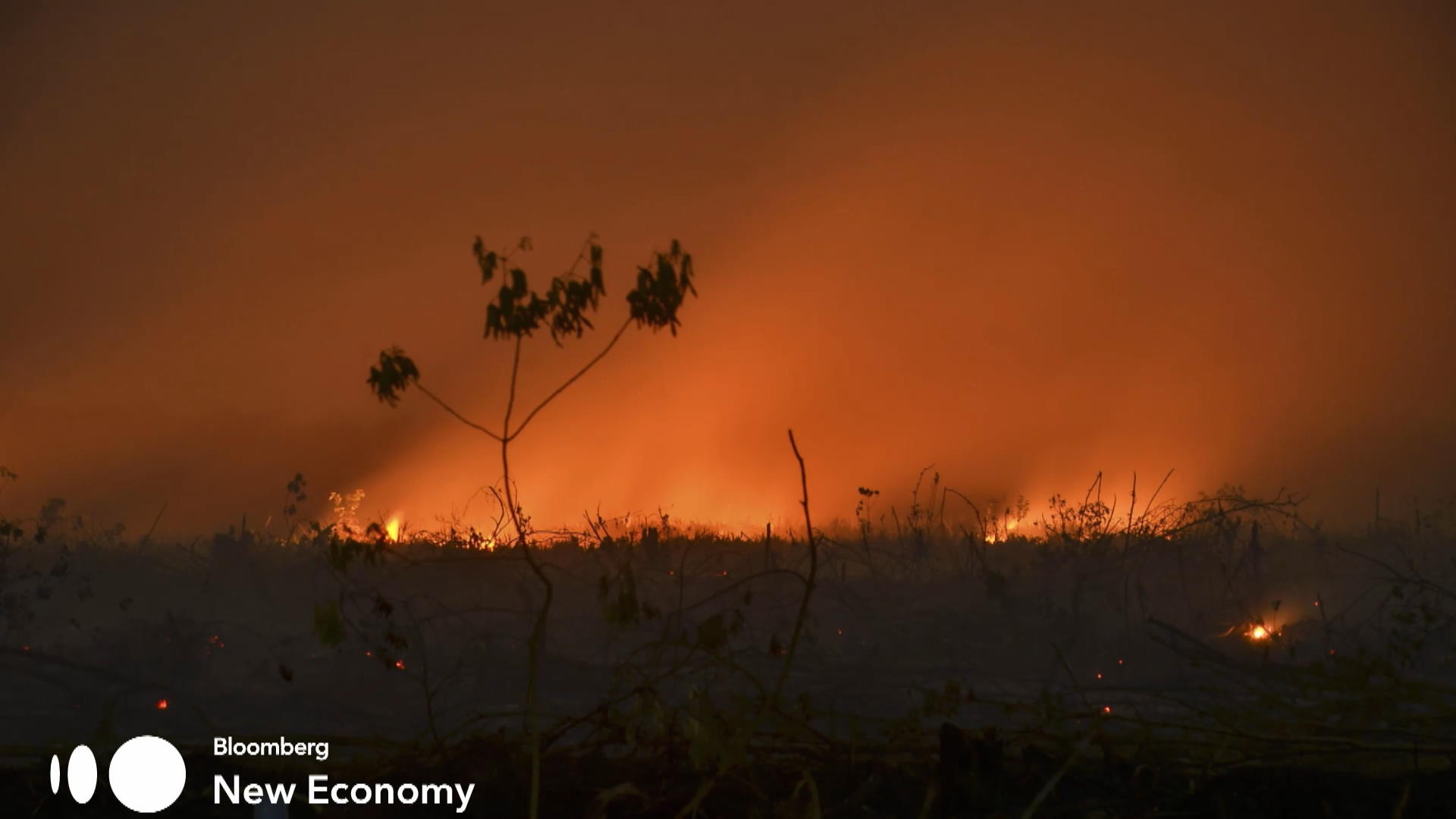 Indonesian Wildfires Spread Noxious Haze Across Southeast Asia