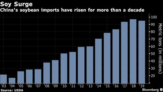 China to Import Less Soy First Time Since 2004