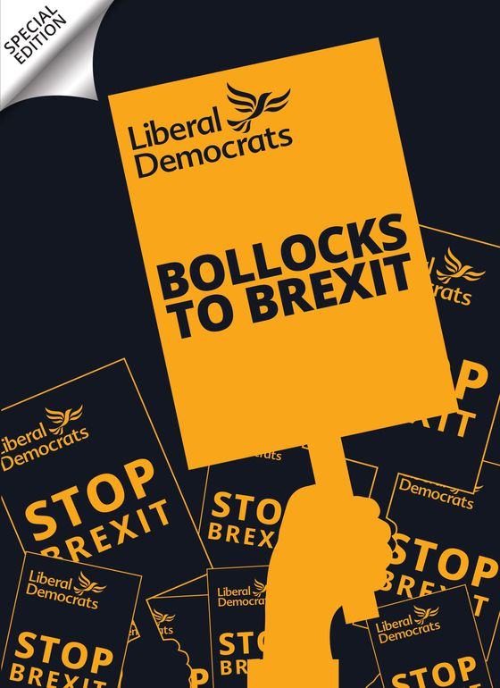 Liberal Democrats Channel the Sex Pistols in Brexit Battle